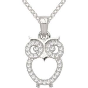 Bridge Jewelry Pure Silver Plated Cubic Zirconia Fashion Owl Pendant JC Penney